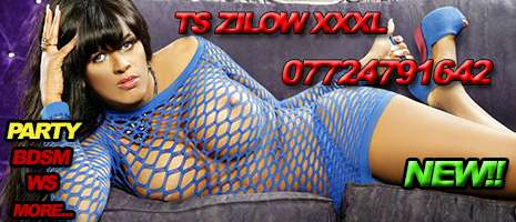 TS Zilow XL
